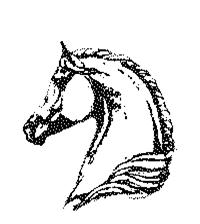 centre equestre sennely